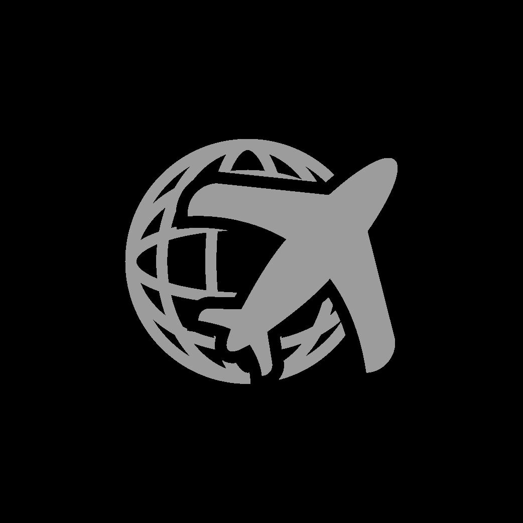 Icon of Plan flying around world